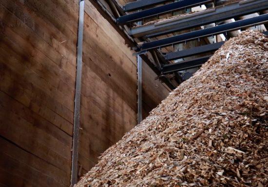 biomasse PDL